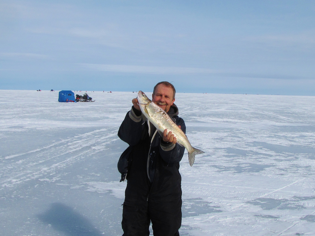 5462856585 0ff5ed3615 b lake simcoe fishing for Lake simcoe fishing